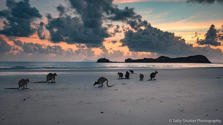 Australia-75.jpg