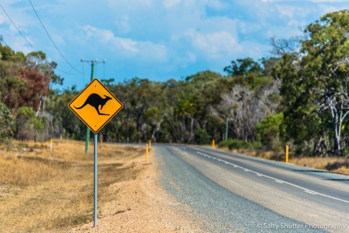Australia-86.jpg