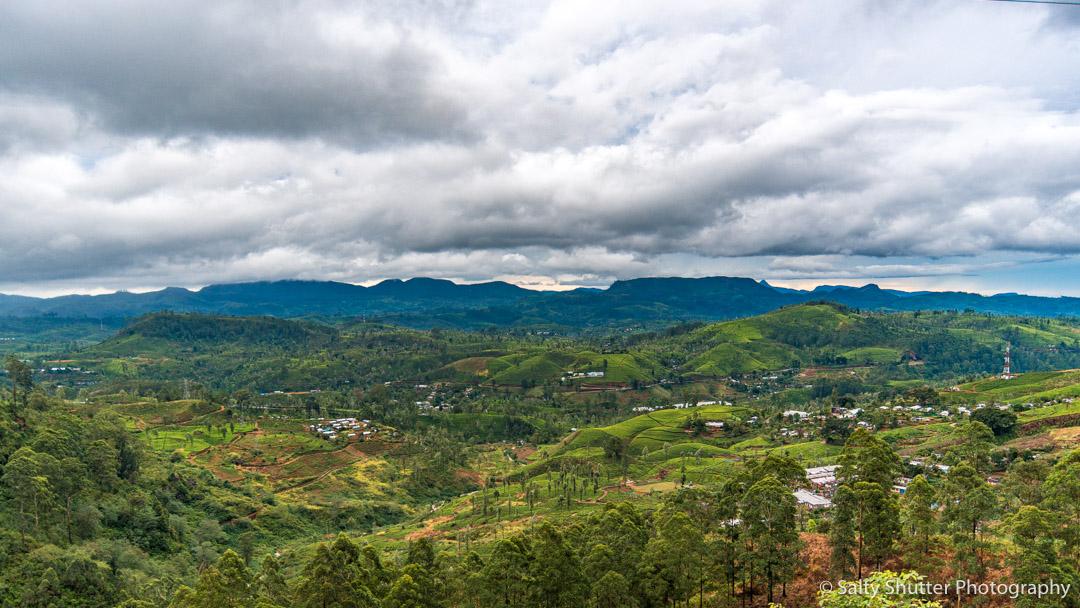 Sri Lanka-37